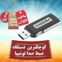 ToshibaGilar.jpg